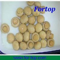 China Canned Whole Button Mushroom on sale
