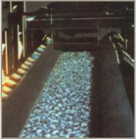 Quality Oil Resistant Conveyor Belt for sale