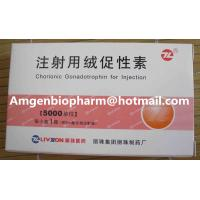 China Healthy hormone weight loss hcg human chorionic gonadotropin injection on sale