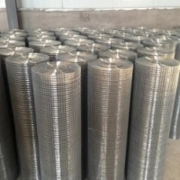 Quality Electro Galvanized Welded Wire Mesh 0.3mm-5.0mm Thickness for Construction for sale