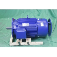 Quality YE3 355M 6 Pole Class F AC Asynchronous Motor 185kW IP55 3ph Induction Motor for sale