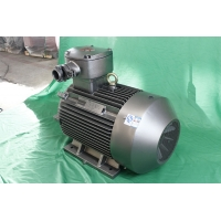 Quality IP55 18.5kW Explosion Proof Electric Motor YBX3 180M-4 3 Phase Induction Motor for sale
