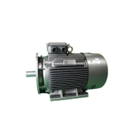 Quality IMB3 Low Voltage 3 Phase Motor YE3 315L-4 185kW Asynchronous Electric Motor for sale