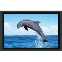 Quality 3D Fixed Frame projection screen/projector screen for sale