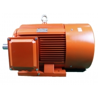 Quality TYE4 Series IE4 3 Phase LV Permanent Magnet Synchronous Motor 6 Pole 8 Pole for sale