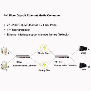 Quality 1+1 Fiber Gigabit Ethernet Media Converter, 2 GE + 2 fiber ports, support jumbo frames for sale