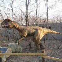 China Animatronic Dinosaur, Customized as Per Buyer's Choice, Sized 6 x 3.1m, Frequency of 50/60Hz on sale