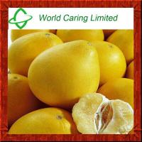 Quality High Quality Herbal Ingredient Grapefruit Seed Extract Naringin 98% HPLC for sale
