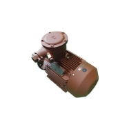 Quality 315L1-2-160kW Explosion Proof Electric Motor YBX3 2 Pole 3 Phase Motor for sale