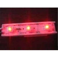 Quality Piranha LED Module for sale