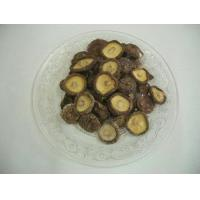 China Other dible fungi dried mushroom on sale