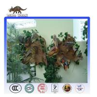 Quality Dinosaur Head For Decoration On Wall for sale
