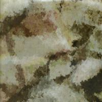 Quality Unique&Special Zchydrographic Desert Camo Hydrographics Hydrographic Film Width 1m Water Transfer for sale