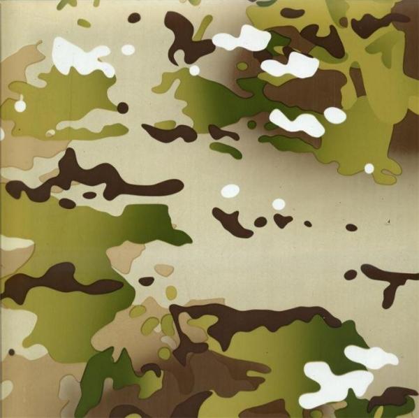 Buy Hot Sale 1M Width Camo Print Water Transfer Printing Film Hydrographic Camouflage Film at wholesale prices