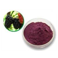 Quality Mulberry Leaf P.E mulberry leaf extract mulberry leaf powder for sale