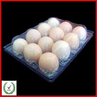 Quality 12 Cells Egg Tray plastic deviled egg tray 12 Cells Egg Tray for sale