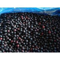 Buy cheap Frozen Fruits NAME: Frozen Blackcurrant from wholesalers