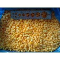 Buy cheap Frozen Fruits NAME: Frozen Apricot Dices from wholesalers