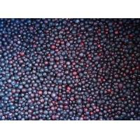 Buy cheap Frozen Fruits NAME: Frozen Blueberry from wholesalers