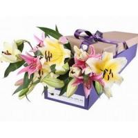 China Oriental Lilies NO.17 delivery flower to taiwan on sale