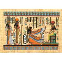 Quality Papyrus Papyrus for sale