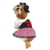 China Costumes Lady Pirate Dog Costume - Great for Halloween ! on sale