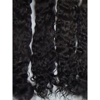 Quality Exquisite Premium ~ Black/Brown ~ 8-9 in. for sale