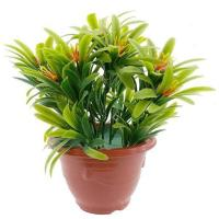 Buy cheap Mini Artificial Buxus Plants For Home and Garden from wholesalers