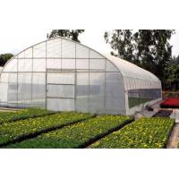 Quality Polytunnel Products Ploytunnel (BZ-PT-1405) for sale